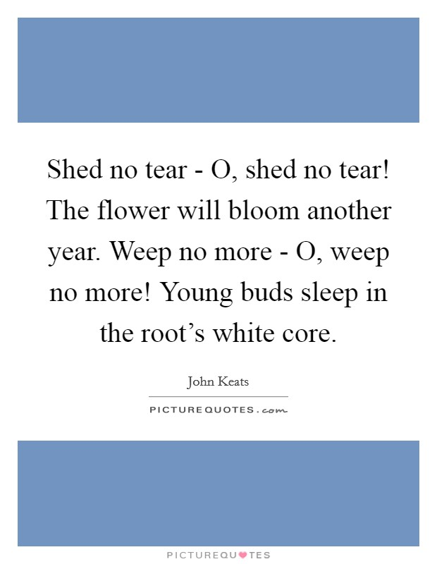 shed no tear o shed no tear the flower will bloom another