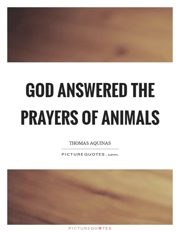 God answered the prayers of animals Picture Quote #1