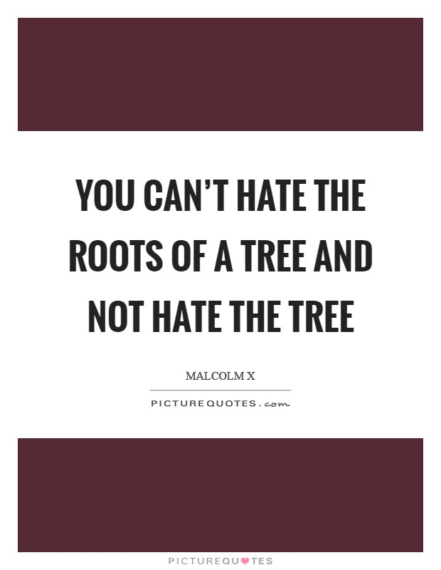 You can't hate the roots of a tree and not hate the tree Picture Quote #1