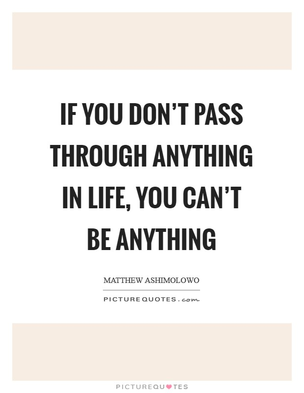 If you don't pass through anything in life, you can't be anything Picture Quote #1