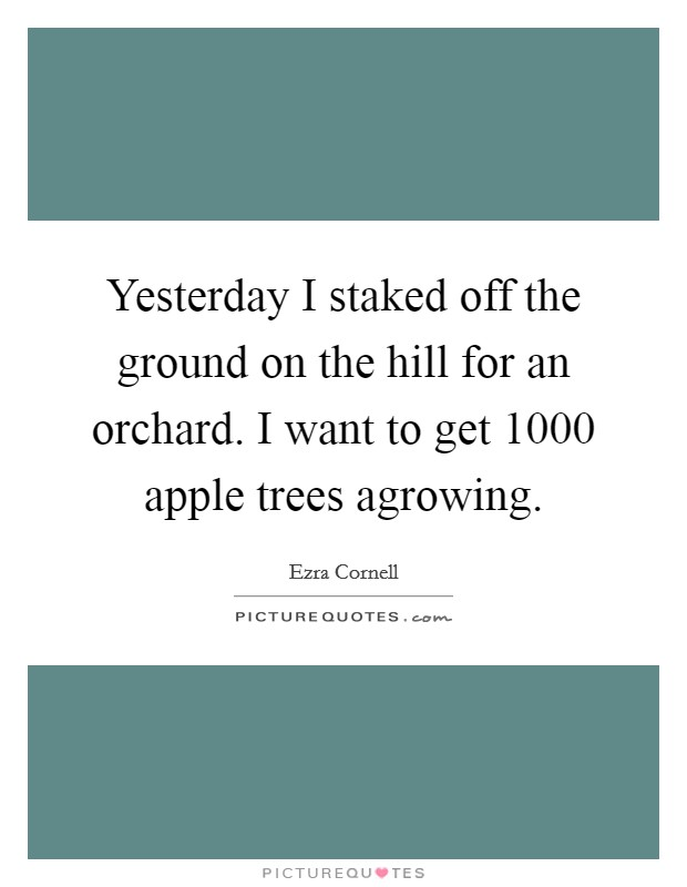 Yesterday I staked off the ground on the hill for an orchard. I want to get 1000 apple trees agrowing Picture Quote #1
