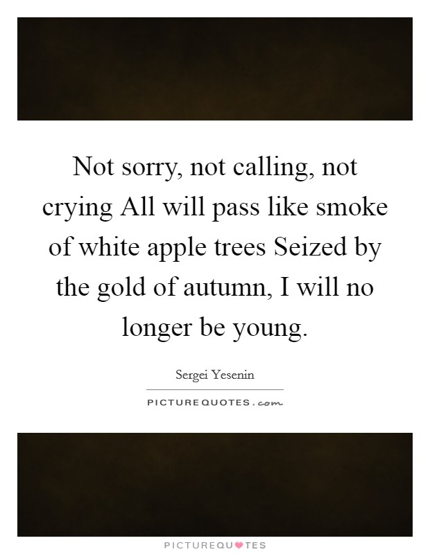 Not sorry, not calling, not crying All will pass like smoke of white apple trees Seized by the gold of autumn, I will no longer be young Picture Quote #1
