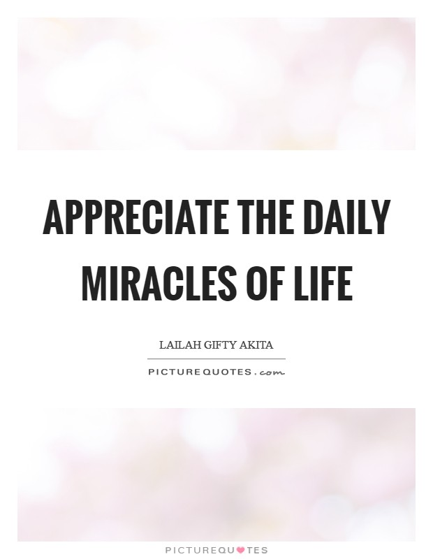 Appreciate the daily miracles of life Picture Quote #1