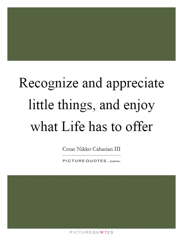 Recognize and appreciate little things, and enjoy what Life has to offer Picture Quote #1