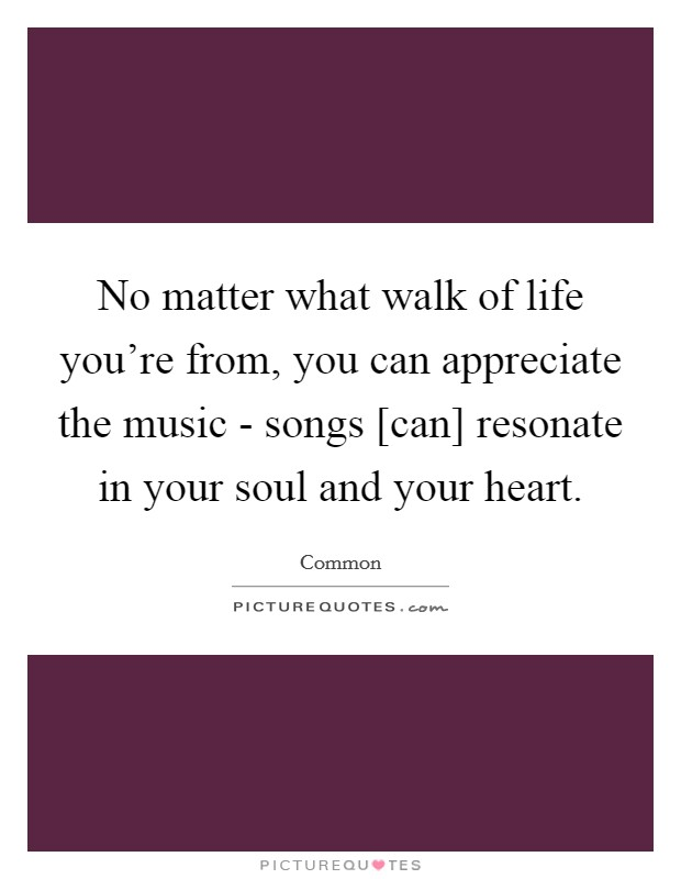 No matter what walk of life you're from, you can appreciate the music - songs [can] resonate in your soul and your heart Picture Quote #1
