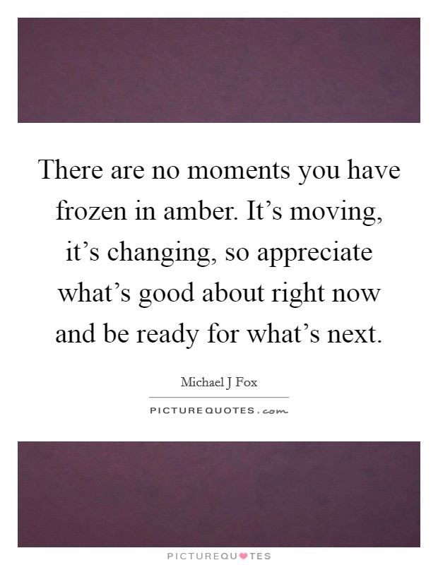 There are no moments you have frozen in amber. It's moving, it's changing, so appreciate what's good about right now and be ready for what's next Picture Quote #1