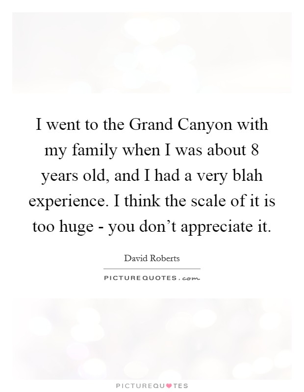 I went to the Grand Canyon with my family when I was about 8 years old, and I had a very blah experience. I think the scale of it is too huge - you don't appreciate it Picture Quote #1