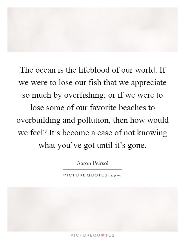 The ocean is the lifeblood of our world. If we were to lose our fish that we appreciate so much by overfishing; or if we were to lose some of our favorite beaches to overbuilding and pollution, then how would we feel? It's become a case of not knowing what you've got until it's gone Picture Quote #1