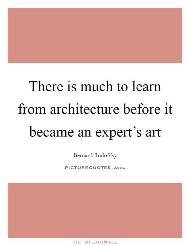 There is much to learn from architecture before it became an expert's art Picture Quote #1