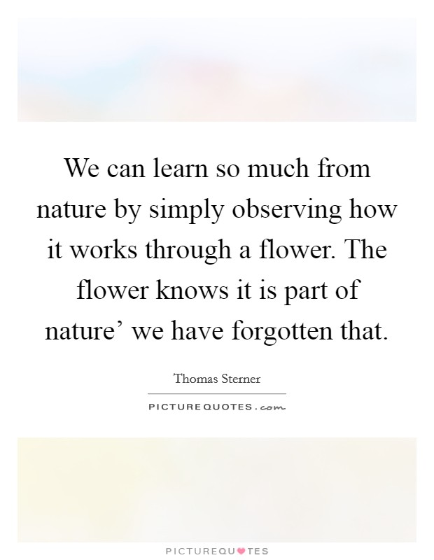 We can learn so much from nature by simply observing how it works through a flower. The flower knows it is part of nature' we have forgotten that Picture Quote #1