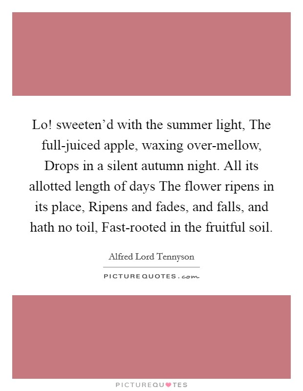Lo! sweeten'd with the summer light, The full-juiced apple, waxing over-mellow, Drops in a silent autumn night. All its allotted length of days The flower ripens in its place, Ripens and fades, and falls, and hath no toil, Fast-rooted in the fruitful soil Picture Quote #1