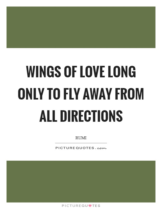 Wings of Love long only to fly away from all directions Picture Quote #1