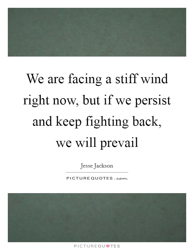 We are facing a stiff wind right now, but if we persist and keep fighting back, we will prevail Picture Quote #1