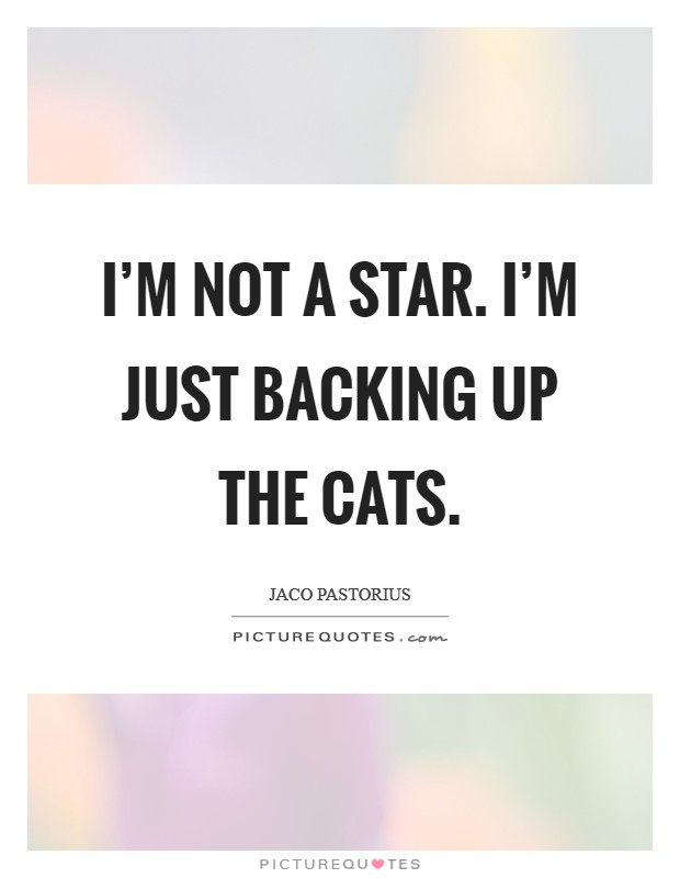 I'm not a star. I'm just backing up the cats Picture Quote #1