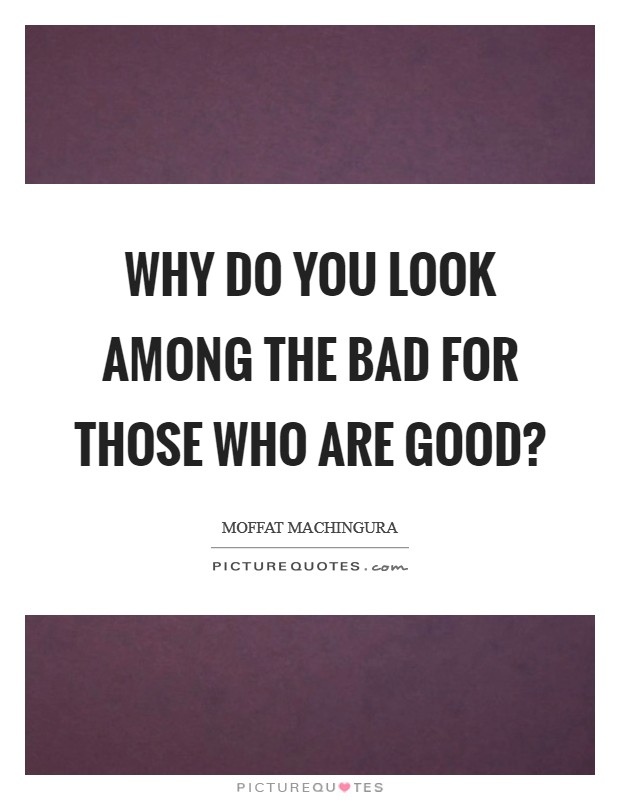 Why do you look among the bad for those who are good? Picture Quote #1