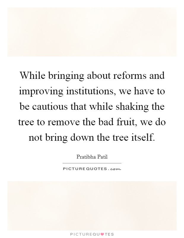 While bringing about reforms and improving institutions, we have to be cautious that while shaking the tree to remove the bad fruit, we do not bring down the tree itself. Picture Quote #1