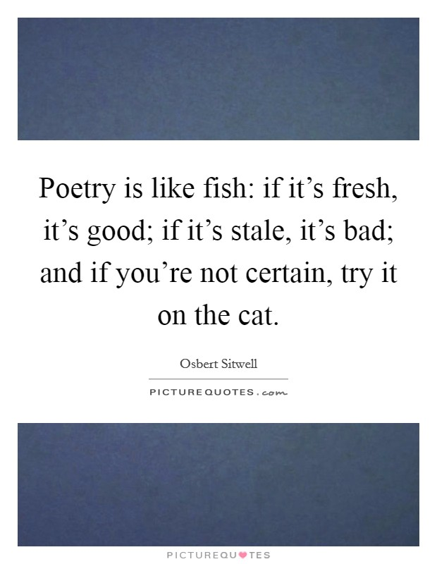 Poetry is like fish: if it's fresh, it's good; if it's stale, it's bad; and if you're not certain, try it on the cat Picture Quote #1