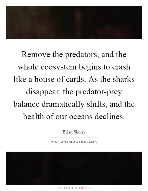 Remove the predators, and the whole ecosystem begins to crash like a house of cards. As the sharks disappear, the predator-prey balance dramatically shifts, and the health of our oceans declines Picture Quote #1