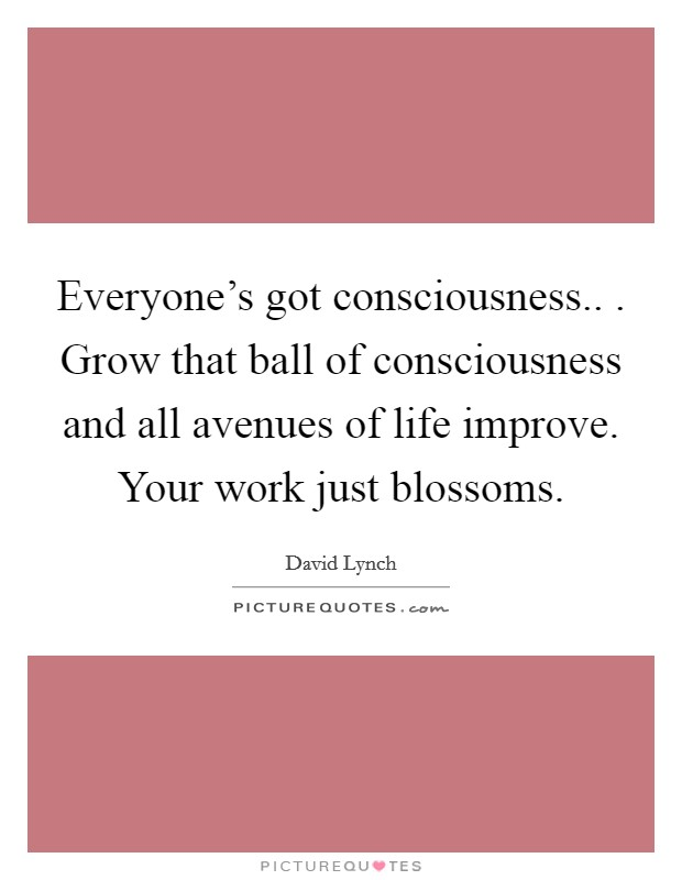 Everyone's got consciousness.. . Grow that ball of consciousness and all avenues of life improve. Your work just blossoms Picture Quote #1