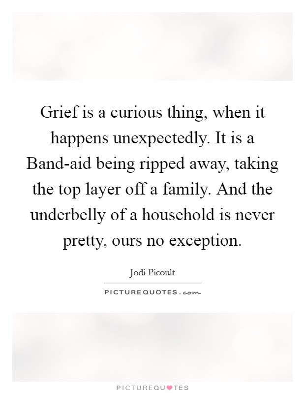 Grief is a curious thing, when it happens unexpectedly. It is a Band-aid being ripped away, taking the top layer off a family. And the underbelly of a household is never pretty, ours no exception Picture Quote #1
