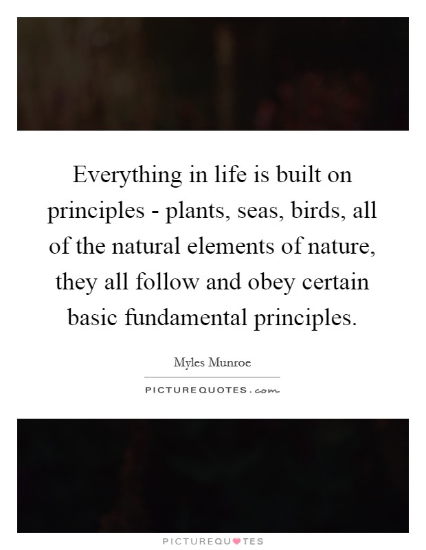 Everything in life is built on principles - plants, seas, birds, all of the natural elements of nature, they all follow and obey certain basic fundamental principles Picture Quote #1