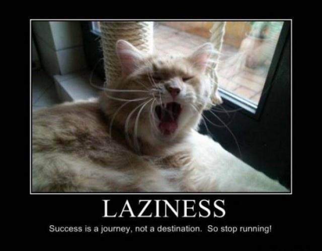 Laziness. Success is a journey, not a destination. So stop running! Picture Quote #1