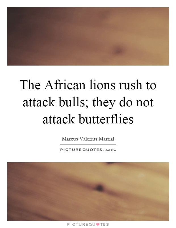 The African lions rush to attack bulls; they do not attack butterflies Picture Quote #1