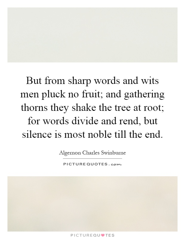 But from sharp words and wits men pluck no fruit; and gathering thorns they shake the tree at root; for words divide and rend, but silence is most noble till the end Picture Quote #1