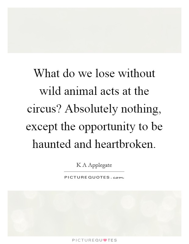 What do we lose without wild animal acts at the circus? Absolutely nothing, except the opportunity to be haunted and heartbroken Picture Quote #1