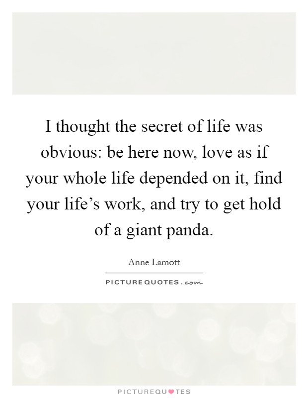 I thought the secret of life was obvious: be here now, love as if your whole life depended on it, find your life's work, and try to get hold of a giant panda Picture Quote #1