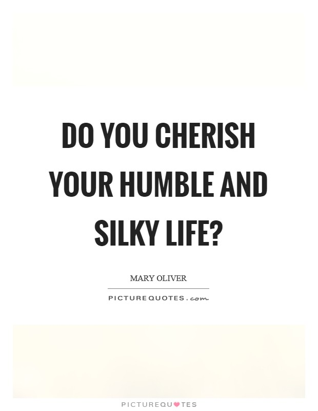Do you cherish your humble and silky life? Picture Quote #1