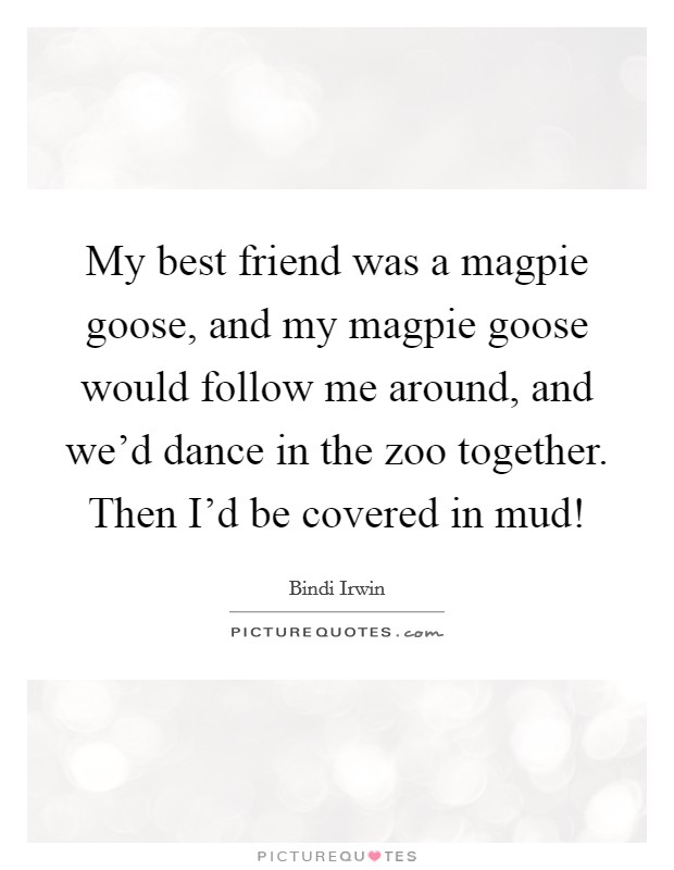 My best friend was a magpie goose, and my magpie goose would follow me around, and we'd dance in the zoo together. Then I'd be covered in mud! Picture Quote #1
