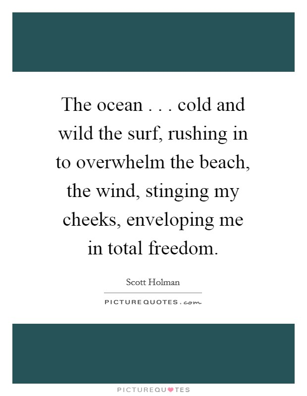 The ocean . . . cold and wild the surf, rushing in to overwhelm the beach, the wind, stinging my cheeks, enveloping me in total freedom Picture Quote #1
