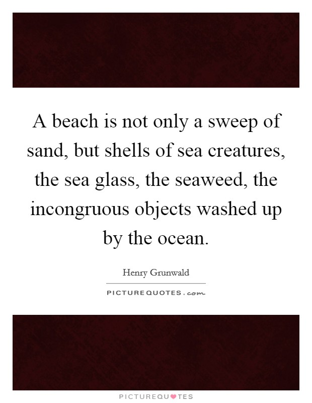 A beach is not only a sweep of sand, but shells of sea creatures, the sea glass, the seaweed, the incongruous objects washed up by the ocean Picture Quote #1