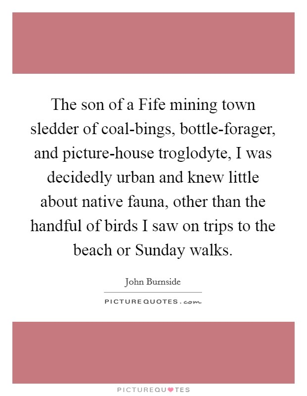 The son of a Fife mining town sledder of coal-bings, bottle-forager, and picture-house troglodyte, I was decidedly urban and knew little about native fauna, other than the handful of birds I saw on trips to the beach or Sunday walks Picture Quote #1