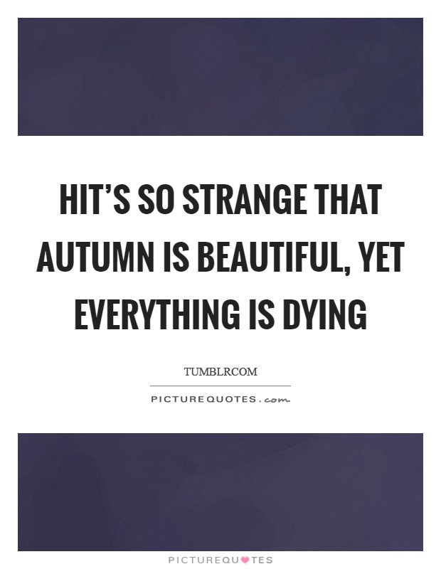 HIt's so strange that autumn is beautiful, yet everything is dying Picture Quote #1