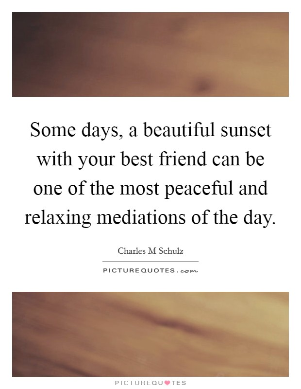 Some days, a beautiful sunset with your best friend can be one of the most peaceful and relaxing mediations of the day Picture Quote #1