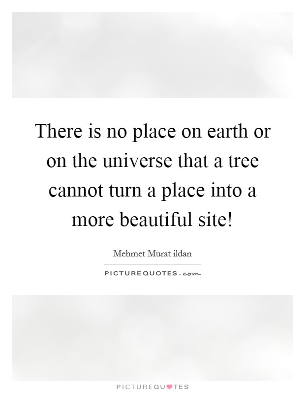 There is no place on earth or on the universe that a tree cannot turn a place into a more beautiful site! Picture Quote #1