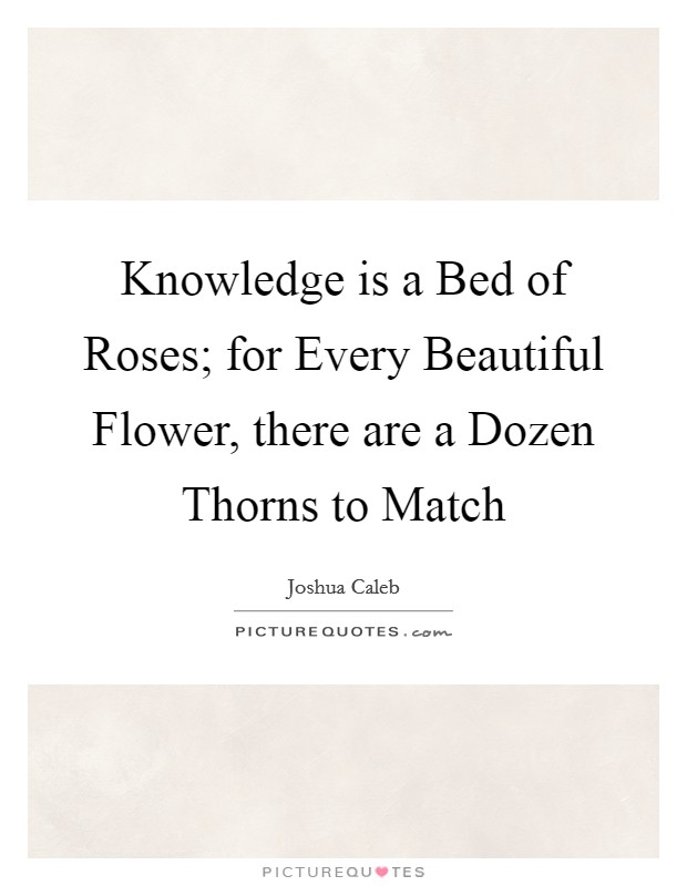Knowledge is a Bed of Roses; for Every Beautiful Flower, there are a Dozen Thorns to Match Picture Quote #1