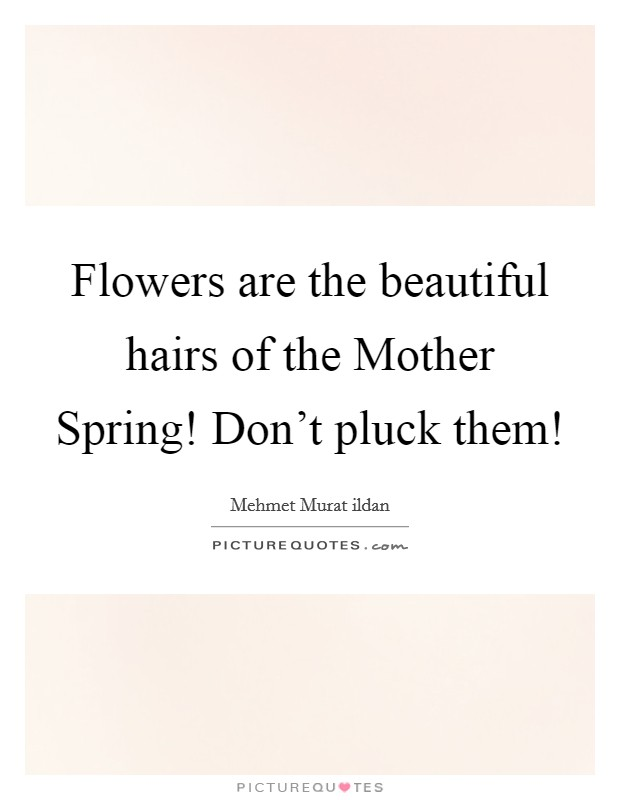 Flowers are the beautiful hairs of the Mother Spring! Don't pluck them! Picture Quote #1