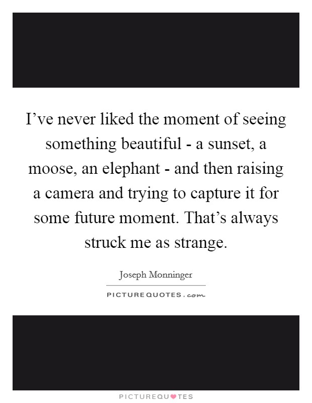 I've never liked the moment of seeing something beautiful - a sunset, a moose, an elephant - and then raising a camera and trying to capture it for some future moment. That's always struck me as strange Picture Quote #1