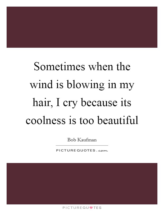 Sometimes when the wind is blowing in my hair, I cry because its coolness is too beautiful Picture Quote #1