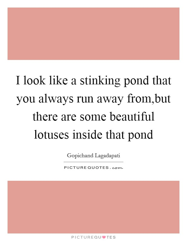 I look like a stinking pond that you always run away from,but there are some beautiful lotuses inside that pond Picture Quote #1