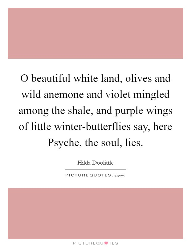 O beautiful white land, olives and wild anemone and violet mingled among the shale, and purple wings of little winter-butterflies say, here Psyche, the soul, lies Picture Quote #1