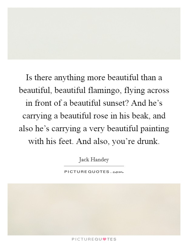 Is there anything more beautiful than a beautiful, beautiful flamingo, flying across in front of a beautiful sunset? And he's carrying a beautiful rose in his beak, and also he's carrying a very beautiful painting with his feet. And also, you're drunk Picture Quote #1