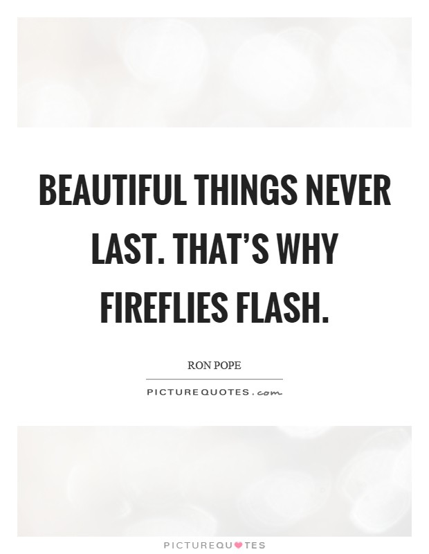 Beautiful things never last. That's why fireflies flash Picture Quote #1