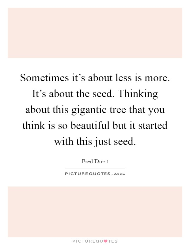 Sometimes it's about less is more. It's about the seed. Thinking about this gigantic tree that you think is so beautiful but it started with this just seed Picture Quote #1