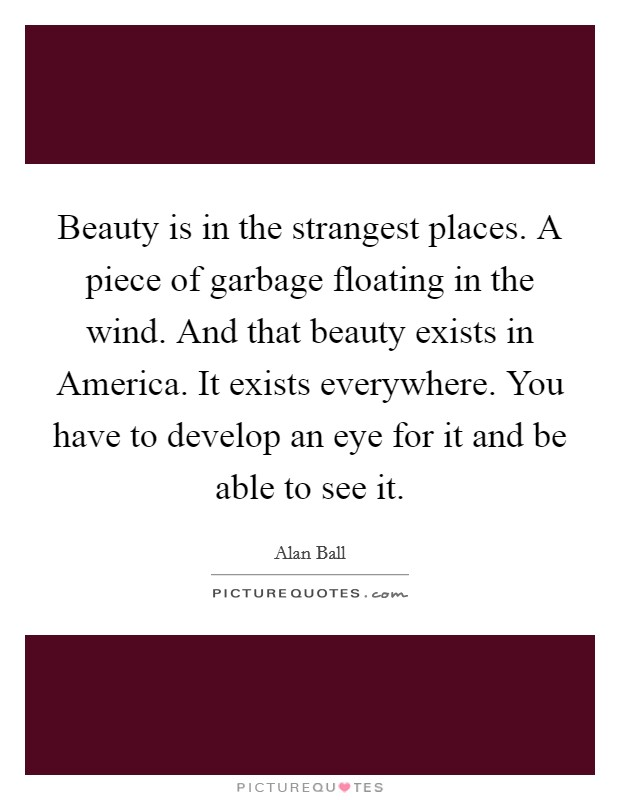 Beauty is in the strangest places. A piece of garbage floating in the wind. And that beauty exists in America. It exists everywhere. You have to develop an eye for it and be able to see it Picture Quote #1