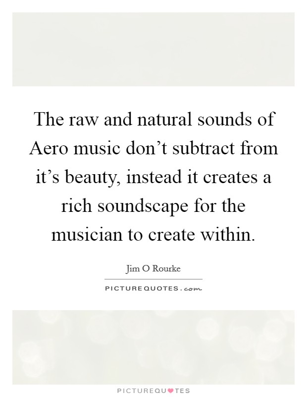 The raw and natural sounds of Aero music don't subtract from it's beauty, instead it creates a rich soundscape for the musician to create within Picture Quote #1