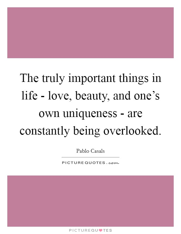 The truly important things in life - love, beauty, and one's own uniqueness - are constantly being overlooked Picture Quote #1